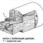 rubit-srub-v-lapu
