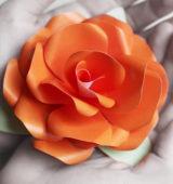 cvety-iz-bumagi-1