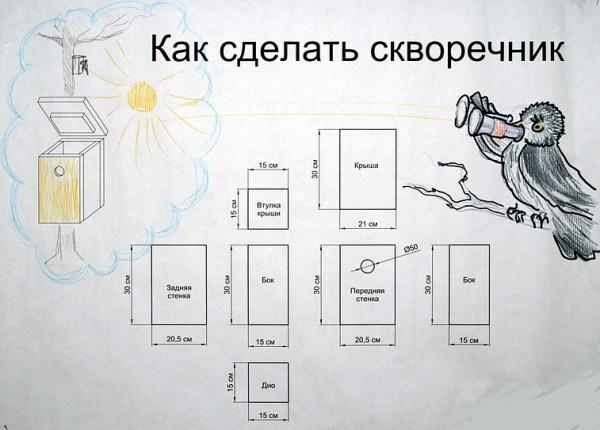 чертеж скворечника