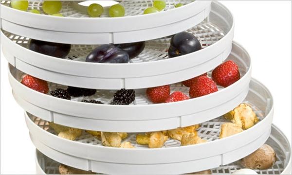 sushilki-dlja-ovoshhej-i-fruktov