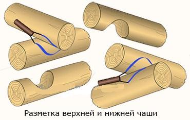 rubka-v-chashu