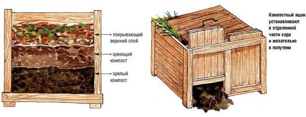 Какие удобрения нужны для огорода